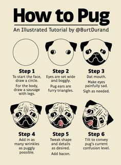 "I present to you an illustrated tutorial on ""How to Pug"""