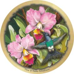 catleya - orquidea Decoupage, Decor, Cheese Platters, Gorgeous Tattoos, Roof Tiles, Earth, Tourism, Colombia, Culture