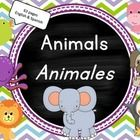 30 adorable clip art animal cards in English and Spanish to use with Science, Reading, Math, Bilingual, Spanish, ESL/ELL,  pocket charts, games, ce...
