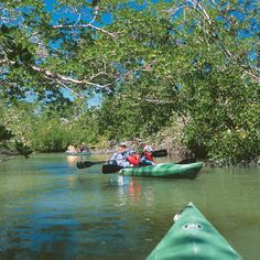 Happy Trails To Follow < Three-Day Weekend Guide: Captiva & Sanibel Islands, FL - Southern Living