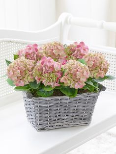 Featuring 2 pink hydrangea planted in a grey wash woven basket. Mothers Day Flowers, Send Flowers, Summer Flowers, Wedding Flowers, Wedding Venues In Virginia, Window Planters, Wedding Verses, Order Flowers Online, Pink Hydrangea
