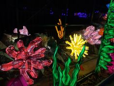 En voie d'illumination saison 2 : Océan jusqu'au 19 janvier 2020 - Katatsumuri no Yume Expositions, Painting, Art, Orcas, Season 2, Wild Life, Art Background, Painting Art, Kunst
