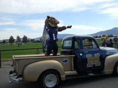 Montana State University. Go Bobcats!