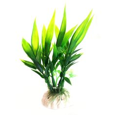 Fengzhicai Plastic Plant Grass for Aquarium Fish Tank Landscape Decoration-Green *** You can find more details by visiting the image link.