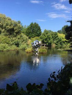 Black Bay Vineyard and Sculpture Trail, Warkworth, New Zealand Kiwiana, New Zealand, Places Ive Been, Vineyard, Trail, Sculpture, River, Spaces, Outdoor