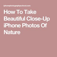 How To Take Beautiful Close-Up iPhone Photos Of Nature