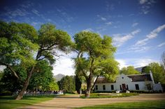 Molenvliet Wine and Guest Estate - Latest Wedding and Events