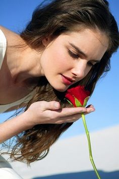 Blumen und Parfums, Blumen in den Parfums 2007 - Parfums 2007, neue Parfüms, blumige Düfte, Eau de Toilette - Die Schwertlilie feiert mit ihrem pudrig blumigen Duft ein großes Comeback. Das Fetischaroma der Renaissance stammt ursprünglich aus Florenz und evoziert den Duft frischer samtiger Haut...