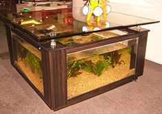Aqua Square Coffee Table
