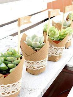 Image result for centros de mesa con plantas suculentas