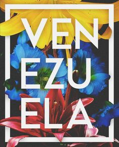 Venezuela Wallpaper, English Day, Live In The Now, Pin Collection, Travel Posters, South America, Nature Photography, Doodles, Culture