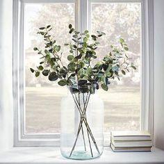 Grote transparante vaas in vensterbank -
