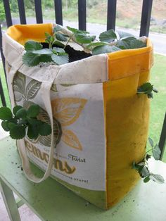 I've been looking for these instructions.... super simple hanging planter keeps off the bugs and birds, is cheap and grows 6-8 day-neutral or everbearing strawberry plants per bag!
