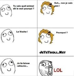 Pourquoi la vache - Car Tutorial and Ideas Troll Meme, Rage Comics, Humor Grafico, Star Wars Humor, Scary Stories, Derp, Animal Quotes, Funny Faces, Funny Posts