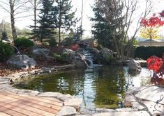 Galéria | Záhradníctvo Garden Team Gardening, Lawn And Garden, Urban Homesteading, Horticulture