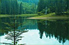 Светлана Шадрина -  Закарпаття- Синевирське озеро! Там справді дуже гарно! мальовничо)!