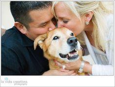 Family's love for their dog - senior tails dog session #sandiego #california…