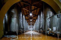 The Winery at Caruso & Minini, Sicily