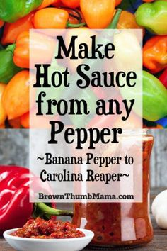 Killer Hot Sauce Learn how to make homemade hot sauce in 20 minutes with this easy recipe. Go mild with Banana Pepper Hot Sauce or feel the burn with Carolina Reaper Hot Sauce. Recipes With Banana Peppers, Hot Pepper Recipes, Hot Sauce Recipes, Stuffed Banana Peppers, Hot Peppers In Oil Recipe, Jalapeno Hot Sauce Recipe, Recipe With Salsa, Pickled Hot Banana Peppers Recipe, Banana Pepper Sauce Recipe