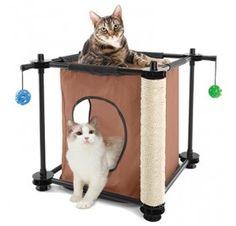 Somos la tienda de animales online especialista en pìensos naturales y accesorios para perros, gatos y otras mascotas. Especialistas en piensos naturales. http://www.theyellowpet.es