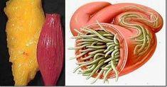 Szybko odczujesz zadziwiające rezultaty Natural Living, Natural Health, Smoothies, Beauty Hacks, Health Fitness, Food And Drink, Vegetables, Ethnic Recipes, Aga