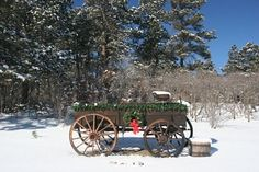Old wooden wagon decorated for Christmas. Snowy scene. Used as a Christmas card or non religious Holiday Card. Stock Photo