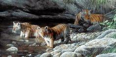 D.W.C. Animals Life - Painter Kevin Daniel | DANCE WITH COLORS
