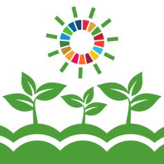 Here's everything you need to know about the 17 Sustainable Development Goals (SDGs) that have become the framework for transforming our global food systems, to be discussed during the upcoming UN Food Systems Summit. Agricultural Development, Sustainable Development, Sustainable Management, Water And Sanitation, Global Food, Sustainable City, Food Security, Food System, Climate Action