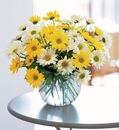 Google Image Result for http://www.northernlakesfloral.com/floral/Day%2520Of%2520Daisies%2520%2436.95.jpg