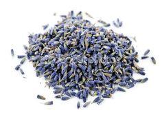 Gourmet Lavender - New Crop