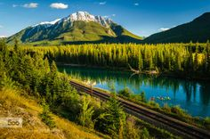 Kayak through Rockies by flyingfishtw  Tree Banff Bow River Bow Valley Parkway Canada Kayak Mountain Nature Pine Rail River Summer Time alb
