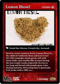 Lemon Diesel | Repined By 5280mosli.com | Organic Cannabis College | Top Shelf Marijuana | High Quality Shatter