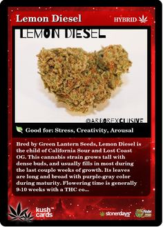 Lemon Diesel | Repined By 5280mosli.com | Organic Cannabis College | Top Shelf Marijuana | High Quality Shatter
