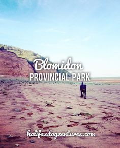 Blomidon Provincial Park in Blomidon, NS New Brunswick, Beach Walk, Travel Abroad, Nova Scotia, Dog Friends, East Coast, Best Dogs, Maine, Places To Go