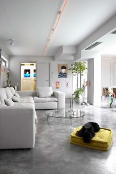 A polished concrete flооr adds sophistication and chic to modern interior design Cement Floor, Decor, Home, House Design, Home And Living, Garage Transformation, Flooring, Home Deco, Concrete Stained Floors