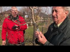(1) Strihanie ovocnych stromov a krikov na jar - YouTube Youtube, Gardening, Flora, Hacks, Garten, Cute Ideas, Lawn And Garden, Youtube Movies, Horticulture