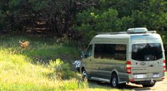 Can you see the deer next to our Roadtrek at this boondocking spot we found in Colorado?