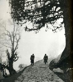 Werner Bischof, Leptchas on the way up, Sikkim, 1951 From Werner Bischof Pictures