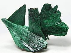 Green Malachite Chatoyant Fibrous Crystal Plumes by FenderMinerals