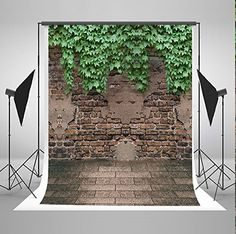 Purchase Brick Wall Photography Backdrop Boston Ivy Photo Background Children Backdrops for Photographers from Hedda Stan on OpenSky. Share and compare all Electronics. Leaf Photography, Spring Photography, Background For Photography, Photography Backdrops, Product Photography, Digital Photography, Children Photography, Photography Backgrounds, Sol Sombre