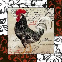 Europa Rooster III (Mindy Sommers)