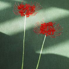 Embroidery Designs, Dandelion, Sewing, Flowers, Plants, Needlepoint, Embroidery, Dressmaking, Couture