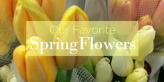 A Look at Our Favorite Spring Flowers - Fresh by FTD