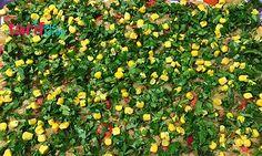 Etimekli Patlıcan Salatası