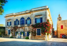 #malta #mdina #flowers #travel