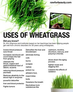 The only problem is that you really need a masticating juicer for wheatgrass ....