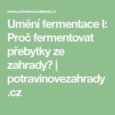Umění fermentace I: Proč fermentovat přebytky ze zahrady? | potravinovezahrady.cz