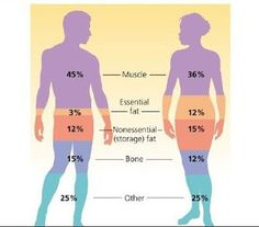 Wellness WITH Chiara R.: Fitness: Differenza tra massa magra e massa grassa...