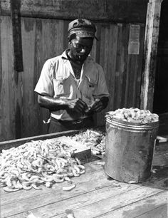 August 29, 1947 - Unidentified worker pinches heads off the shrimp in Apalachicola, Florida.