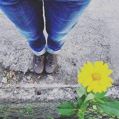 #ootd Neue Wanderschuhe ausprobieren. Läuft. 😍👍 . . . #bluejeans and new #trecking #shoes + 1 yellow #flower :) #capsulewardrobe